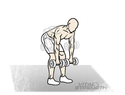 Best Mass Exercises 7 Bent over Barbell Rows