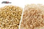 quinoa-v-brown-rice