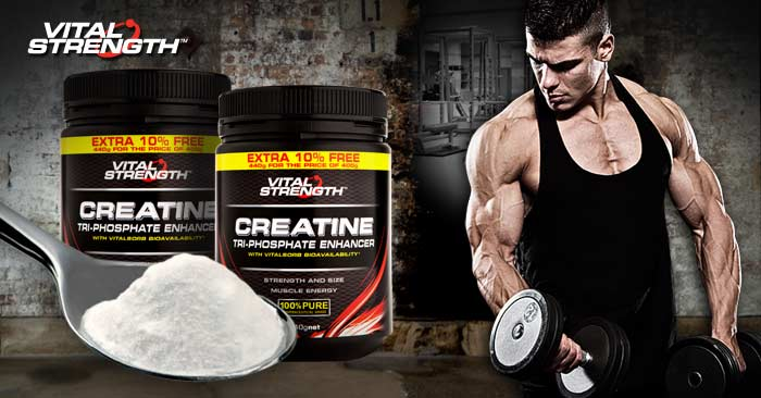 creatine-facts